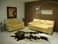 C312  Leather Sofa